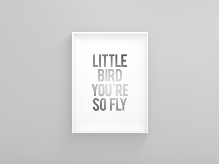 little_bird_gray_display