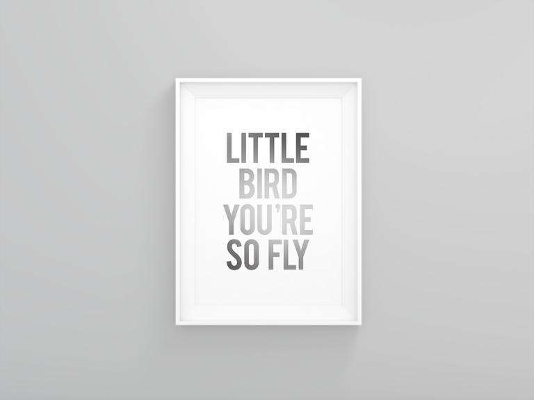 little_bird_gray_display